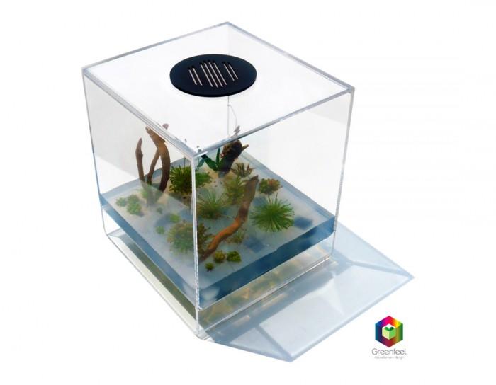Packshot d'un cube pour l'entreprise Greenfeel